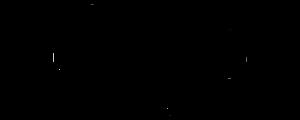 Kaffeerösterei Kopiton Mamajun-300x120